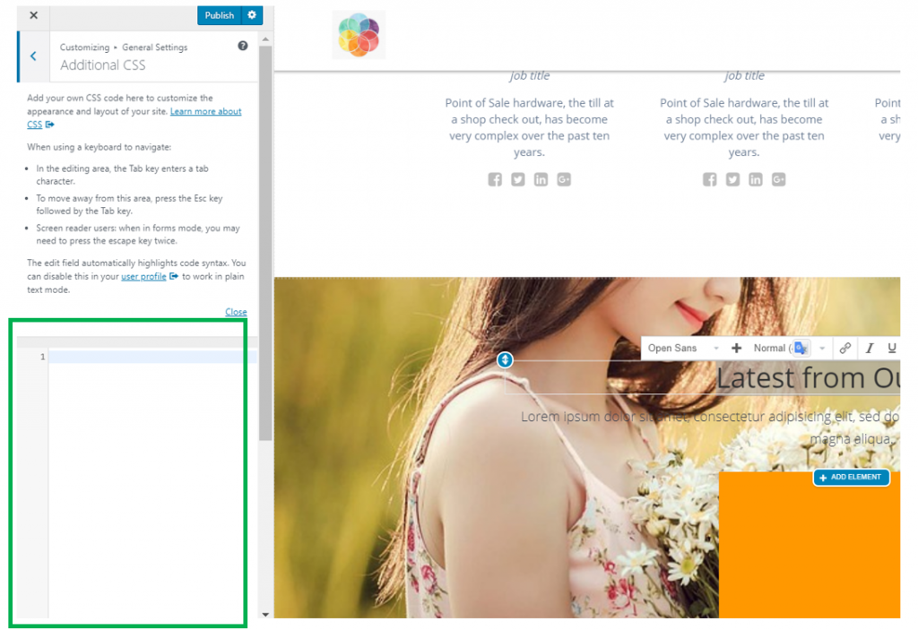Customize the Website Using Additional CSS - Highlight