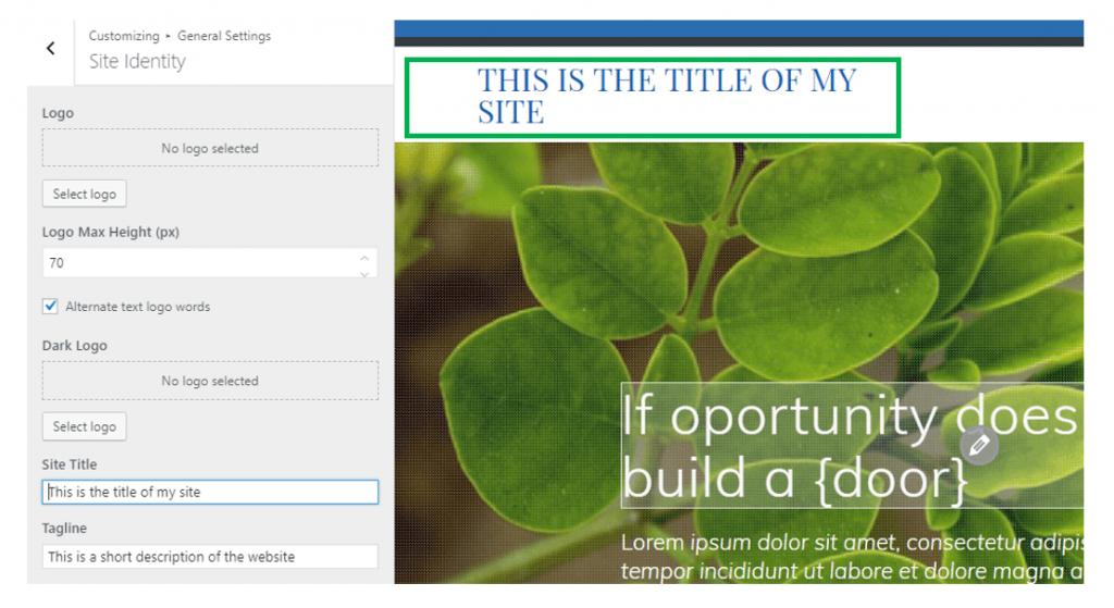 change site title
